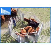 Buy cheap Galvanized Cattle Yard Panel Round / Square For Farm Area , Welded Wire Livestock Panels from wholesalers
