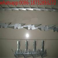 Wholesale Hot-dip galvanized medium sized wall spike /Big wall spike top wall razor spikes fencing anti climb wall spike from china suppliers