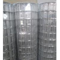 "Wholesale Hot-dipped Galvanized Welded Wire Mesh   3""X2"" from china suppliers"
