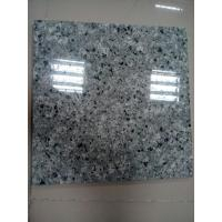 Wholesale New Products Polished Qasia Auzl Granite Wall or Flooring Tile Promotion from china suppliers