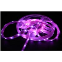 Wholesale Purple 4.8W/M Epistar SMD3528 IP68 LED Strip / 2100LM 24w Led Flex Strip Lights from china suppliers