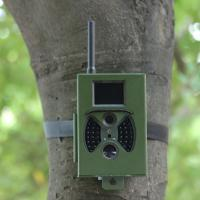 Quality Network 2G Outdoor Infrared Hunting Trail Camera HC - 300M with SMTP Function for sale