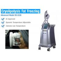 Wholesale Non Surgical Liposuction Cryolipolysis Body Slimming Machine , Vacuum Weight Loss Machine from china suppliers