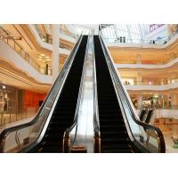 Wholesale Safety 24m Department Store Escalators Stainless Steel Decoration from china suppliers