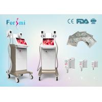 Wholesale 2 handles working same time 3.5 inch Cryolipolysis Slimming Machine FMC-I cryolipolysis machine from china suppliers