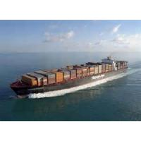 Wholesale International Ocean Freight Services Fast To Montevideo From Shenzhen / Shanghai from china suppliers
