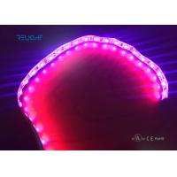 Wholesale Full color strip led 5050 waterproof IP65 flxible strip with UL listed from china suppliers