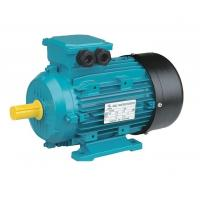 Wholesale 2 Pole Three Phase Asynchronous Motor For General Driving 0.12hp 0.09kw from china suppliers