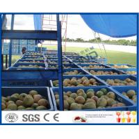 Wholesale Fresh Pineapple / Mango Juice Processing Plant With Can Packaging Machine from china suppliers