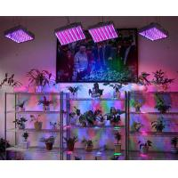 Wholesale Hydroponic Indoor 225 AC90 - 260V 15W Led Plant Growing Lights with Ce & RoHs approval from china suppliers