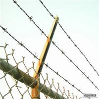 Wholesale Galvanized Barbed Iron  Wire from china suppliers