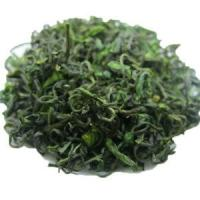 Wholesale Mount Emei Early Spring Organic Bamboo Leaf Green Tea / Zhu Ye Qing Tea from china suppliers