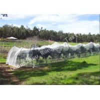 Wholesale Knitted Polyethylene Agriculture Anti Bird Nets , Industrial Or Garden Bird Control Netting from china suppliers