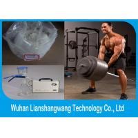 Wholesale CAS 15262-86-9 Bodybuilding Testosterone Isocaproate , White Raw Steroid Powders from china suppliers