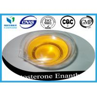 Wholesale Testosterone Enanthate Primoteston Delatestryl 315-37-7 Increase Muscle from china suppliers