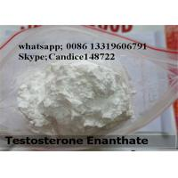 Wholesale 50-50-0 Raw Steroid Powders Estradiol Benzoatae Female Hormone Estradiol Benzoatae from china suppliers