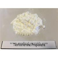 Wholesale High Customs Pass Rate Testosterone Propionate 100mg/Ml for Muscle Growth from china suppliers