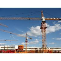 Wholesale Building Tower Crane TC6024 max load 10t from china suppliers