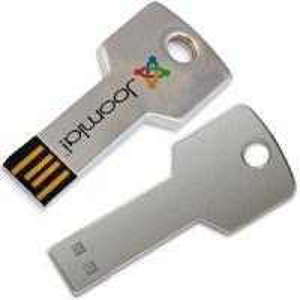 China Plug-and-play USB Flash Disk Promotional USB Key Flash Drives 4GB OEM on sale