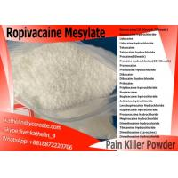 Wholesale Local Anesthetic Ropivacaine Mesylate Pharma Raw Powder CAS NO 854056-07-8 from china suppliers