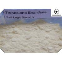 Wholesale CAS 472-61-546 Trenbolone Steroid With Male Hormone Drug Property , No Side Effect from china suppliers