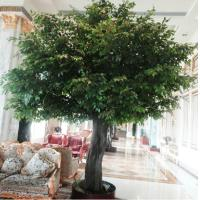 Buy cheap 5m hall/hotel indoor landscaping artificial banyan tree from wholesalers