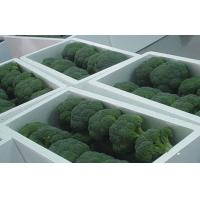 Wholesale 2 - 4cm Organic Frozen Broccoli Cauliflower Contains Contains Mineral Substance, Less fiber, washiness from china suppliers