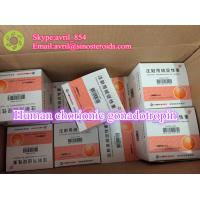 Wholesale Natural Healthy Human Peptides Human Chorionic Gonadotropin Pregnancy Test from china suppliers