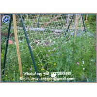 Wholesale 1.8x18m 24x24cm mesh size white cucumber yam support plant trellis net vegetable support net from china suppliers