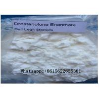 Wholesale Effective Muscle Enhancement Steroids , Drostanolone Enanthate Powder 472-61-145 from china suppliers