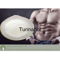 Wholesale 4-Chlorodehydromethyltestosterone Raw Testosterone Powder Turinabol from china suppliers