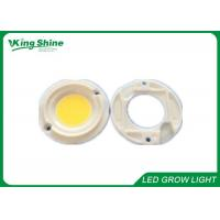 Wholesale CXA Series CXA3070 Warm White 3000K COB Led Array Cree Xlamp Led Grow Lights from china suppliers