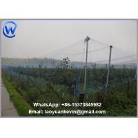 Wholesale BEST SELLING Anti Bird Netting Pond Garden Debris protection from china suppliers