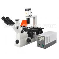 Wholesale Inverted Fluorescence Binocular Compound Microscopes 40X - 400X A16.0701 from china suppliers