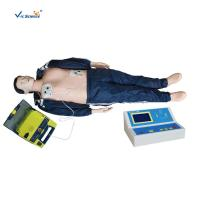 Wholesale Basic Life Support BLS Manikin CPR Manikin Adult Model In Medical Science from china suppliers