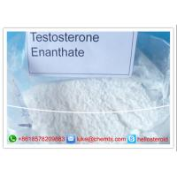 Wholesale Anabolic Steroid Powder Muscle Gain Testosterone Enanthate 99% Assays CAS 315-37-7 from china suppliers