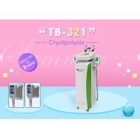 Wholesale Touch Screen Cryolipolysis Slimming Machine With Cavitation RF Heads from china suppliers