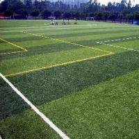 Wholesale Sports Area Artificial football Turf , Fibrillated fake lawn grass , indoor from china suppliers