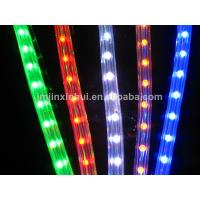 DS 13mm Round 2 wires Blue LED Rope Light details.jpg