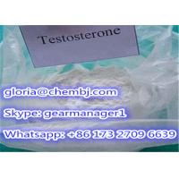 Wholesale 98% Min Synthetic Testosterone Anabolic Steroid Powder Testosterone CAS 58-22-0 from china suppliers
