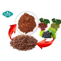 Wholesale Reddish Brown Grape Seed Extract Whitening Skin Support Healthy Cognitive Function from china suppliers