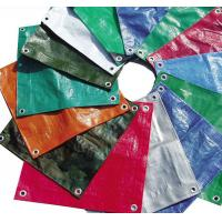 Wholesale PE Tarpaulin Pcs from china suppliers