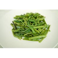 Wholesale Green Fern Nutritious Boiled Vegetables , Healthy Boiled Bracken from china suppliers
