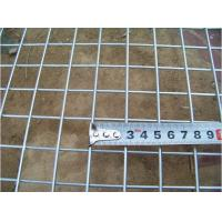 "Wholesale 1/2"" , 1""Galvanized Welded Wire Mesh For Building/Fencing from china suppliers"
