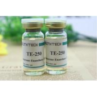 Wholesale Testosterone Cypionate 200mg/ml TC200 Injectable Anabolic Steroids 10ml from china suppliers
