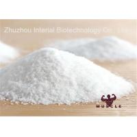 Wholesale Analgesic Powder Lidocaine HCl / Lidocaine Hydrochloride , Local Anesthetic Drugs from china suppliers
