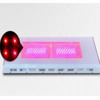 Wholesale Growing with LED lights 600W  576×1W from china suppliers