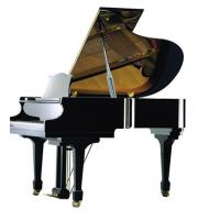 Wholesale 170cm Black polished Wooden Acoustic Grand Piano with Suzuki / Roslau String from china suppliers