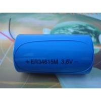 Wholesale High capacity ER34615 3.6V 19000mAh battery from china suppliers