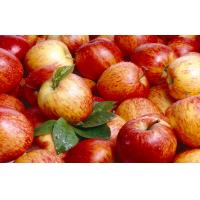 Wholesale Pome Fruit , Fresh Red Organic Fuji Apple 7cm With Sugars , Vitamin C from china suppliers